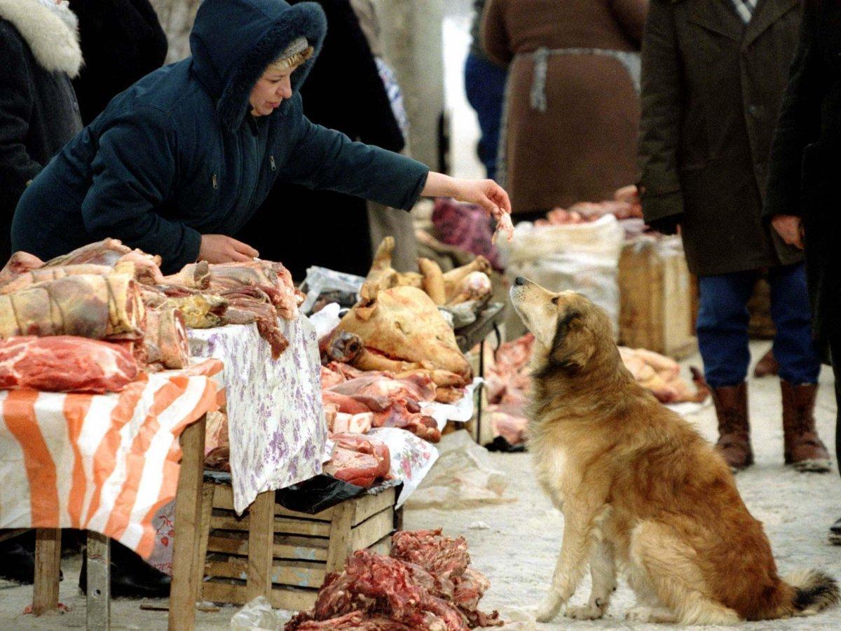 Reuters / Un venditore ambulante dà da mangiare ad un cane in un mercato illegale alla periferia di Mosca, gennaio 1997.