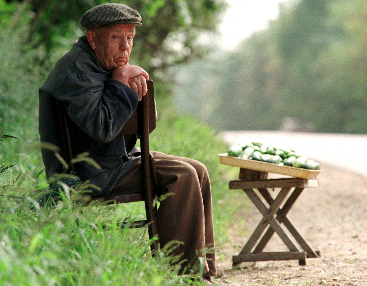 Reuters / Un anziano vende delle zucchine lungo una strada ad Orlovo, periferia di Mosca, 6 agosto 1998. I pensionati, spesso, vendevano verdure che coltivavano loro stessi, durante la crisi economica.